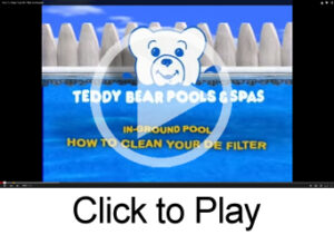 Clean DE Filter play