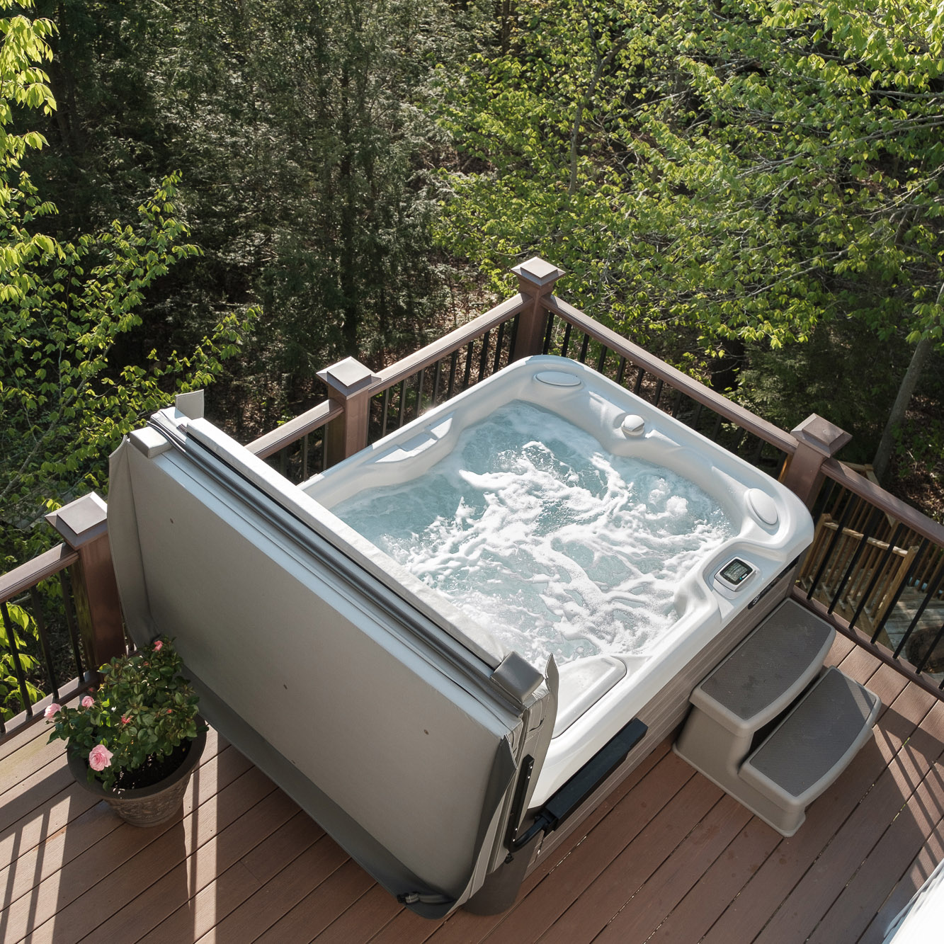 Hot Tub Gallery Teddy Bear Pools And Spas