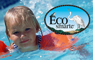 Eco-Smarte pool